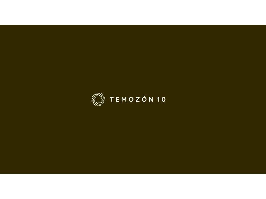 temozon 10 mod b lot 8910