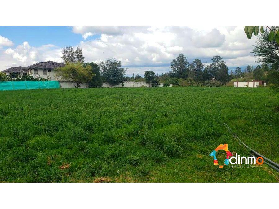 amplios terrenos urbanizacion puembo tipo quinta