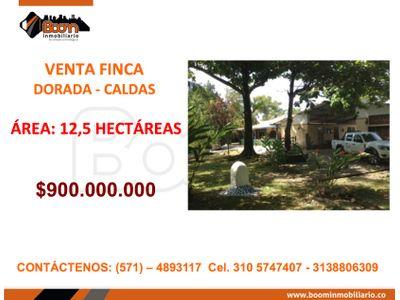 *VENTA FINCA 12,5 HAS LA DORADA