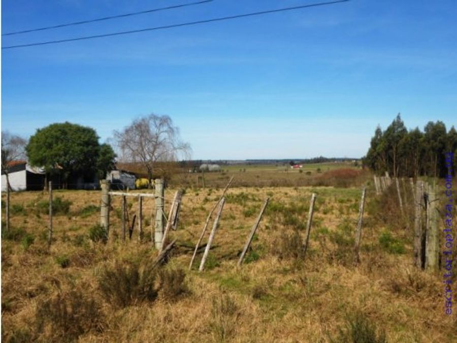 campo 5 has criadero y casa a reparar financio