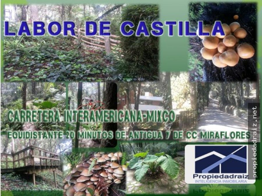 terrenos labor de castilla carr interd