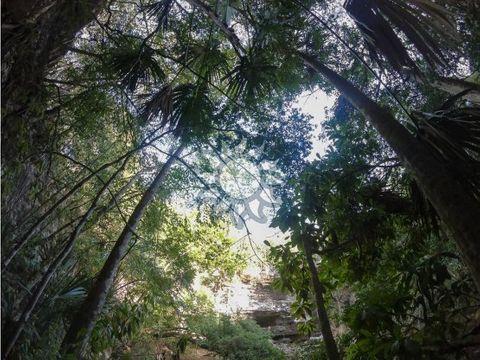 cenote abierto con cavernas cerca de valladolid