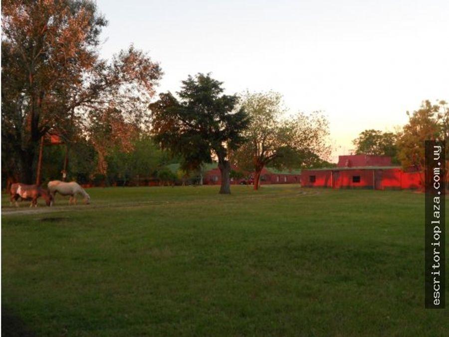 campo 17 has con gran casco en florida