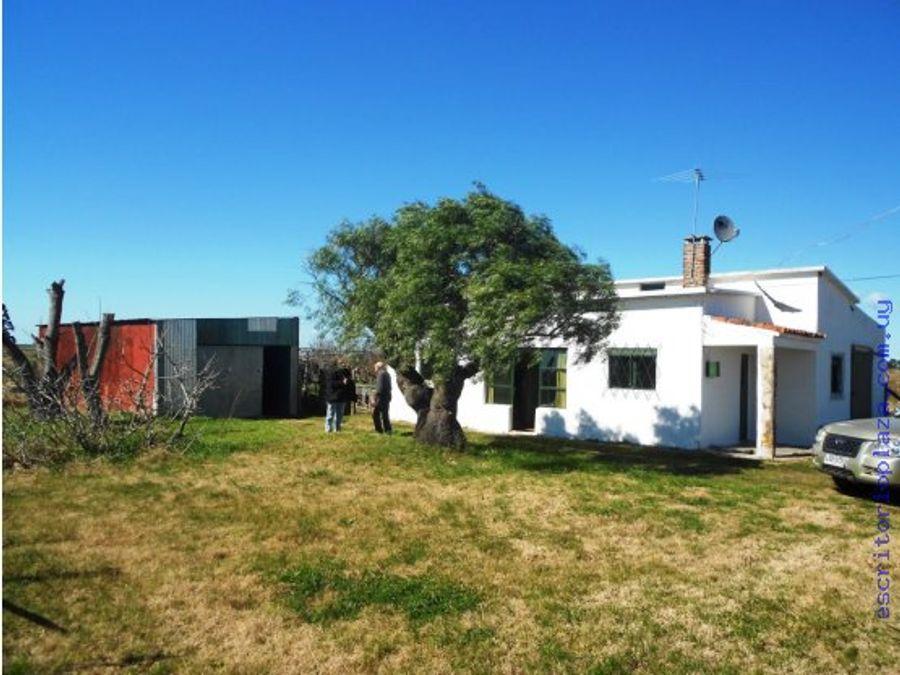 campo 4 has con casa sobre ruta financio
