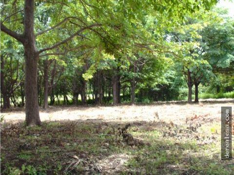 terrenos en verde con anteproyecto en esparza