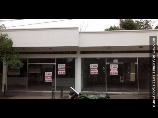 local comercial de 272 m2 centro 37 y 38 con 5