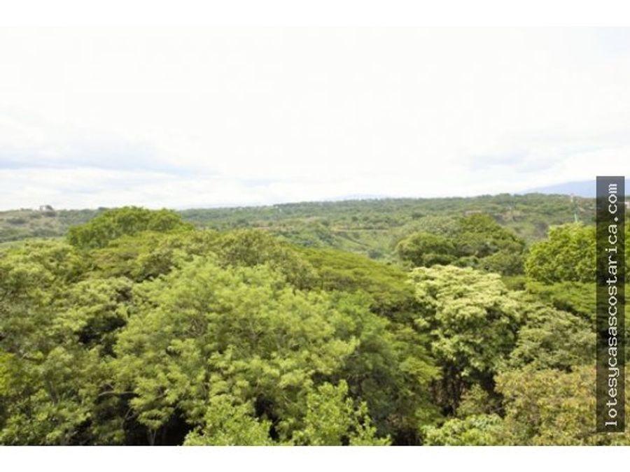 quinta en venta ciudad colon 28 hectareas