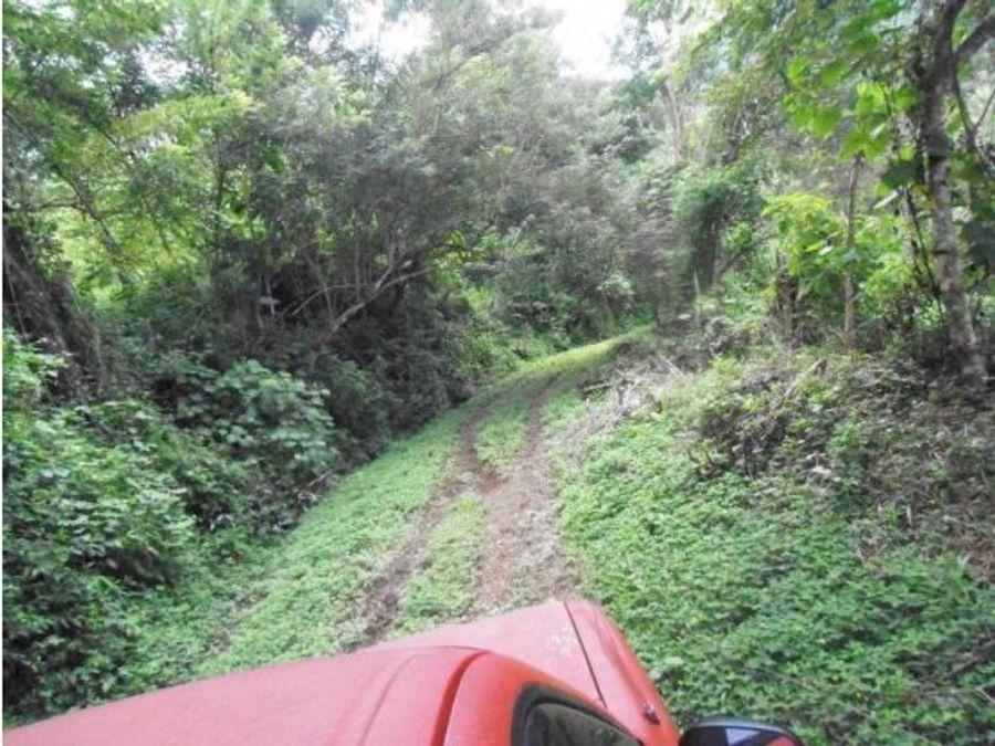 finca de 209 hectareas en puriscal para ganado