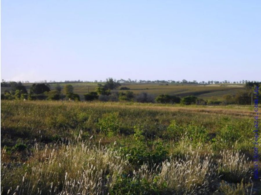campo 31 has agricola con represa y riego