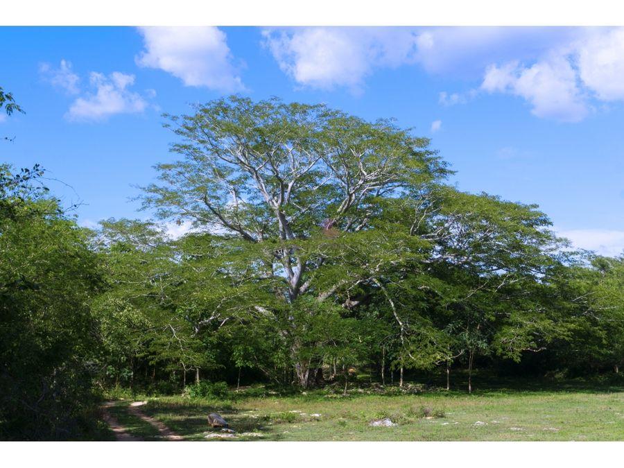 hacienda en venta para restaurar xtakay