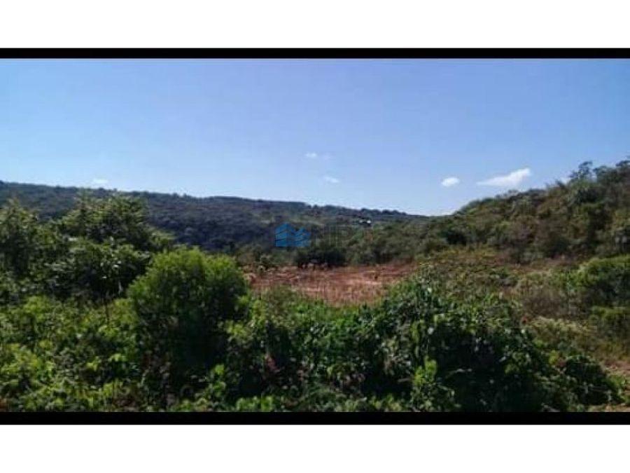 vendo 7 hectareas en san bernardino