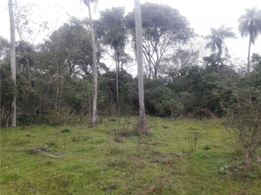 vendo hermoso terreno en san bernardino