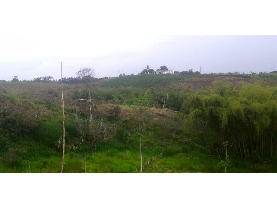 lote rural de una hectarea a 7 kms de variante condina en pereira