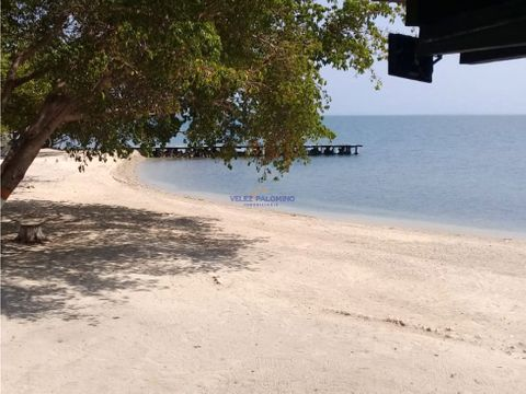 isla en baru punta platanal