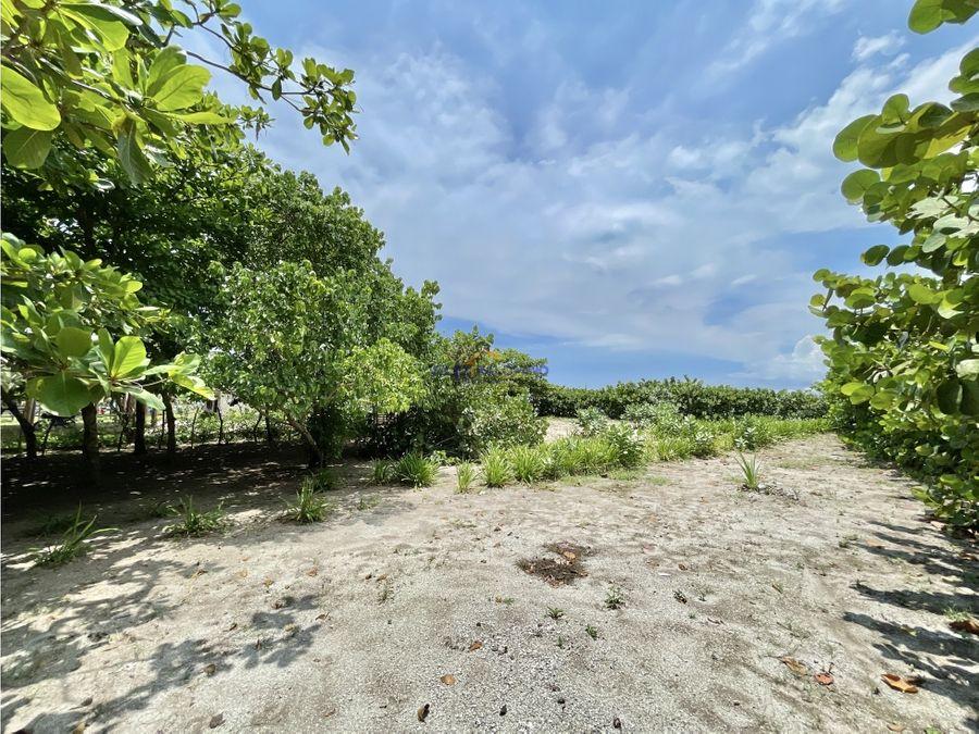 lote de playa isla de tierra bomba