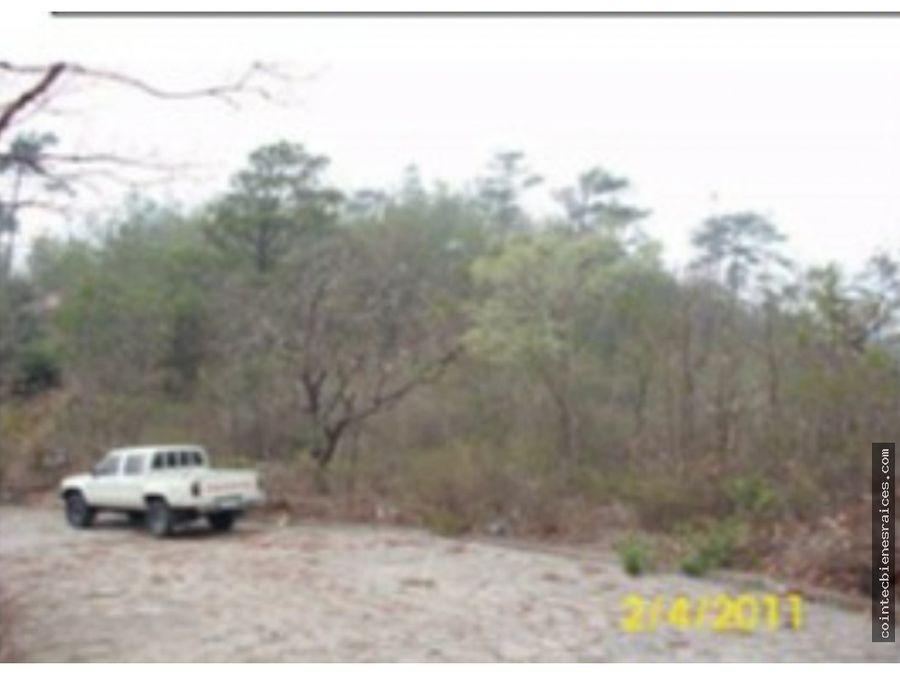 venta de terreno carretera hacia tatumbla l768734675