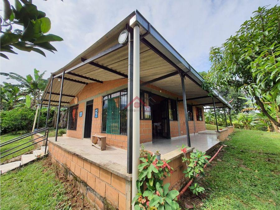 se vende lote y casa en parcelacion en el municipio de belalcazar
