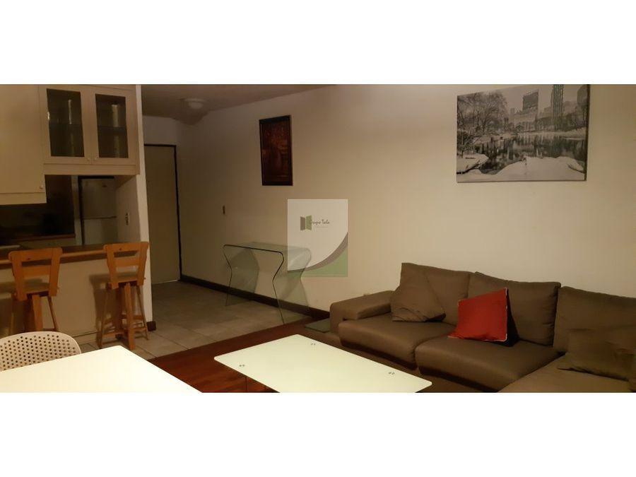 apartamento en renta zona 9 cortijo