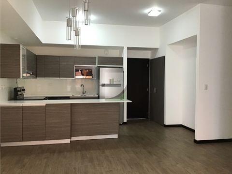 apartamento en renta zona 10 casalini