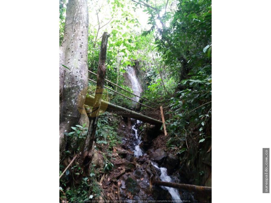 venta o permuta de finca ecoturistica en el valle del cauca