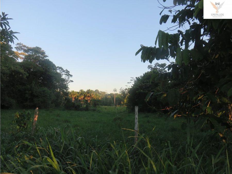 vendo fundo en yurimaguas loreto peru