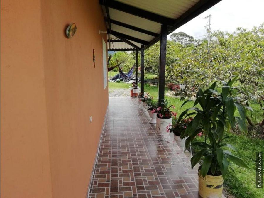 vendo casa campestre en anolaima cundinamarca