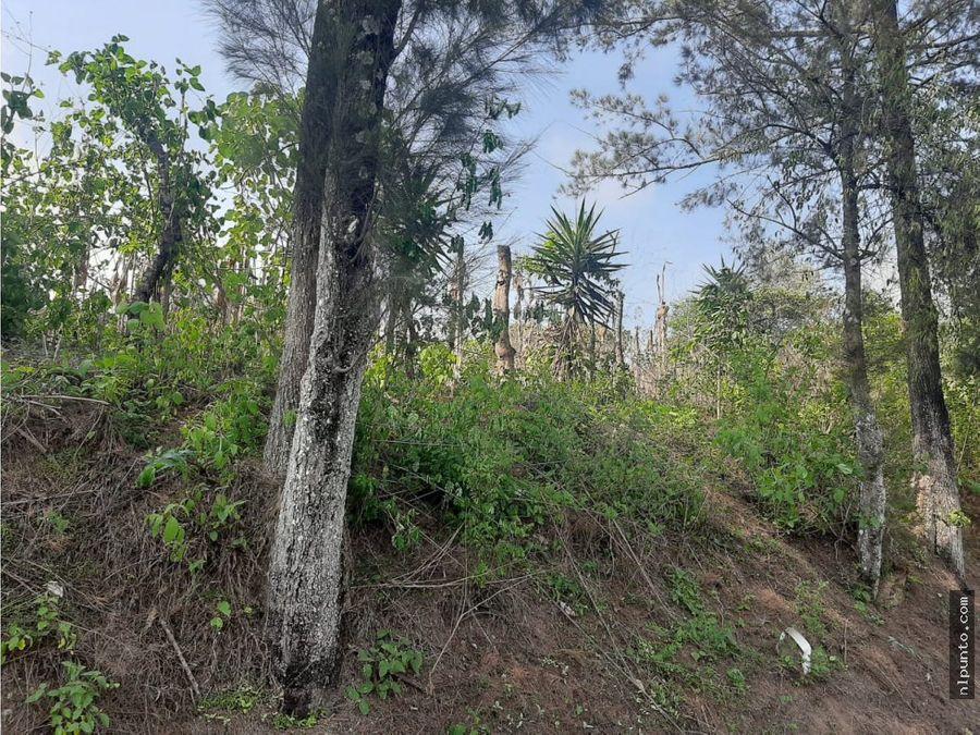 terreno con lindas vistas sobre carr san miguel duenas