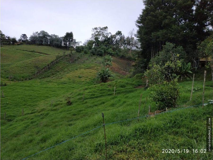 finca en rionegro apta para cultivo y ganado