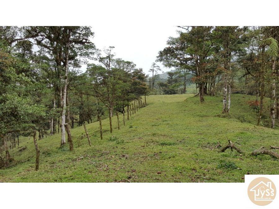 finca san ramon 18 hectareas
