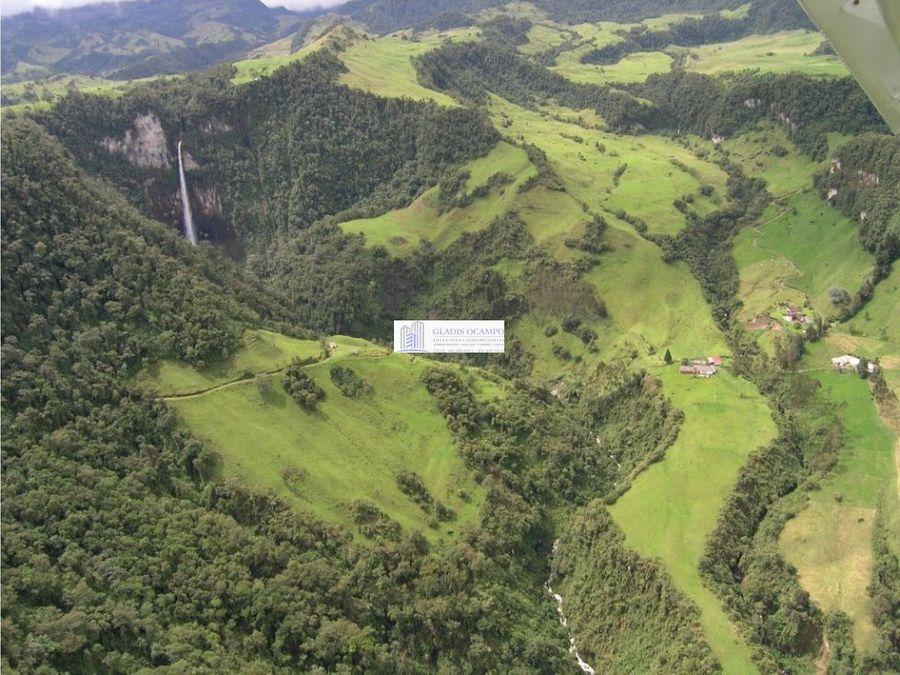 terreno con nacimientos de aguas termales