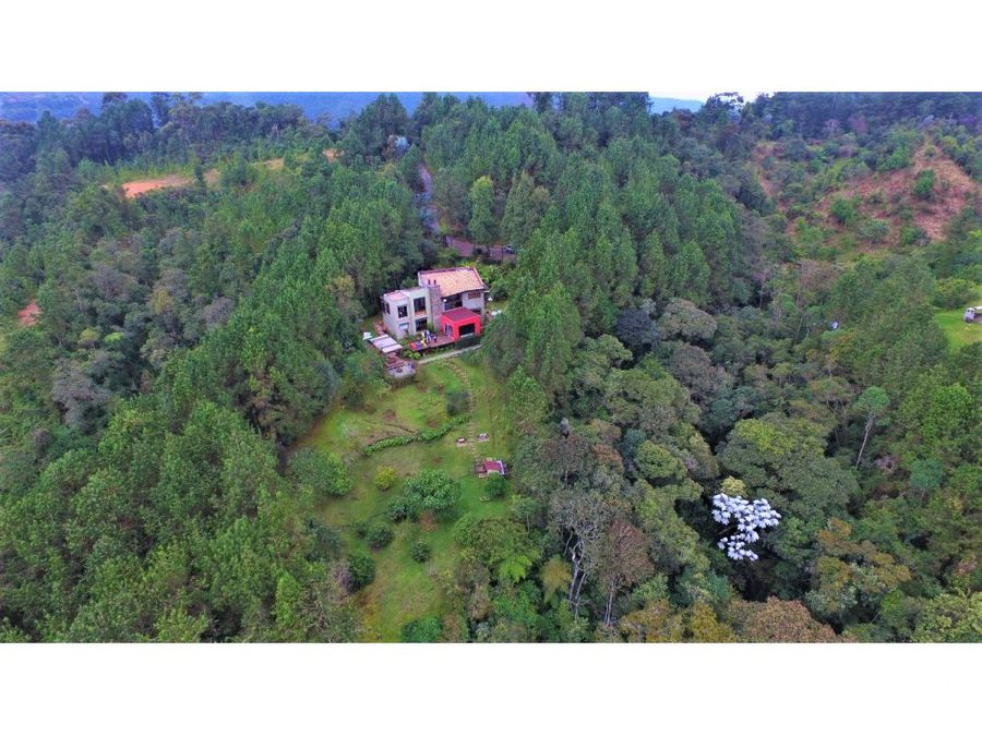 vendo casa finca en medio del bosque en la miel envigado