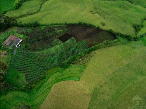 finca con buen desarrollo agricola en sonson