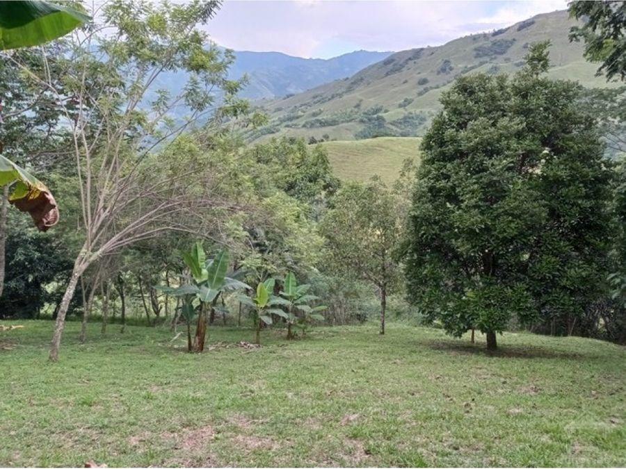 finca de descanso en titiribi a tan solo 15 minutos del parque