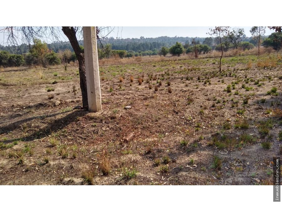 terreno en venta en san lucas cuauhtelulpan