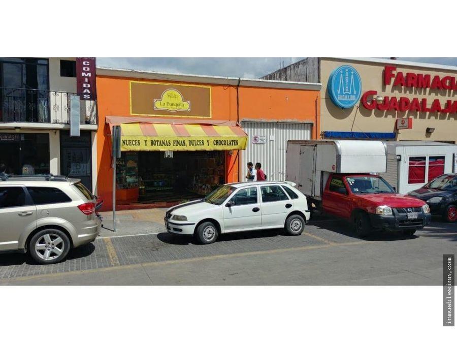 terreno en venta zona centro apizaco tlaxcala