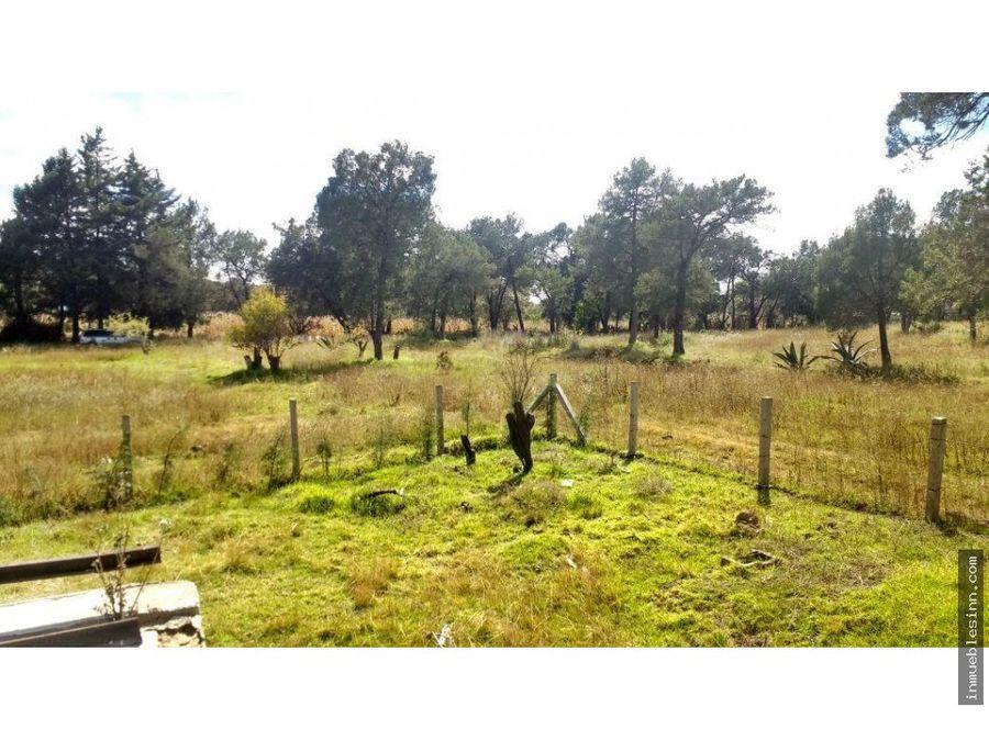 terreno en venta sn dionisio yauhquehmecan tlax