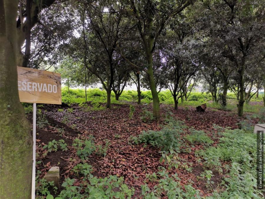 en venta terrenos en exclusivo proyecto san miguel duenas antigua