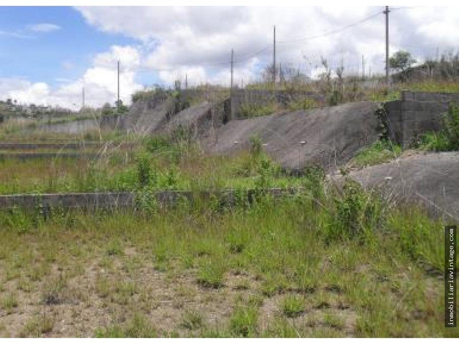 terreno para desarrollo en z18 km 95 las tapias
