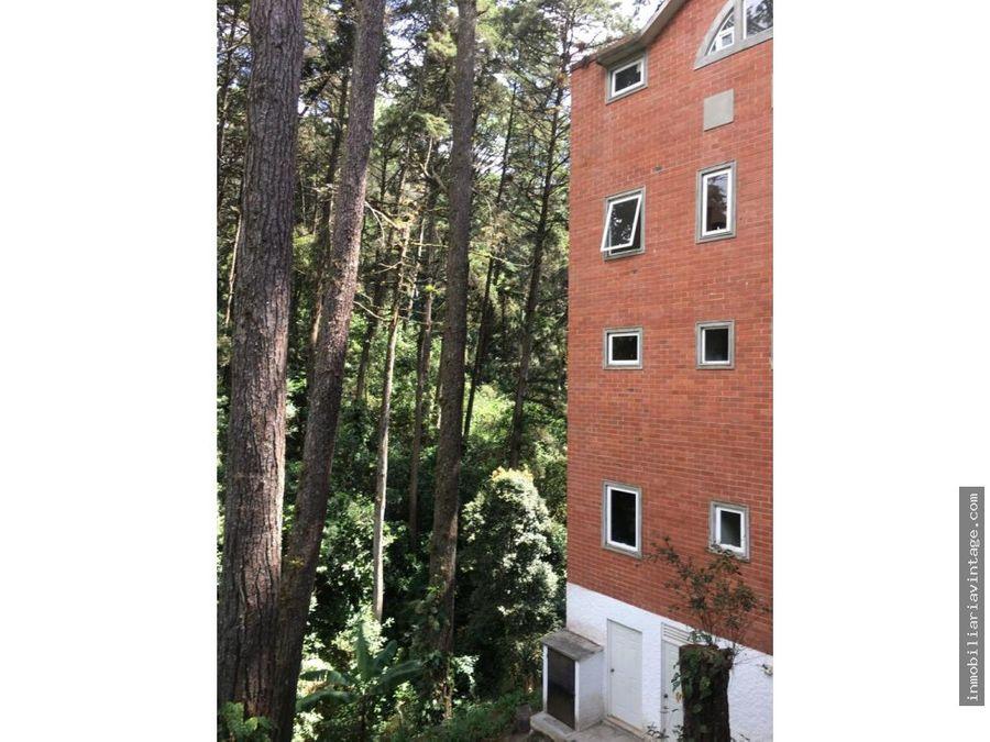 apartamento en renta pinos de muxbal