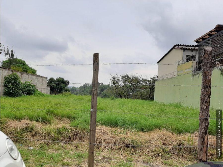 terreno en venta colonias de minerva zona 15
