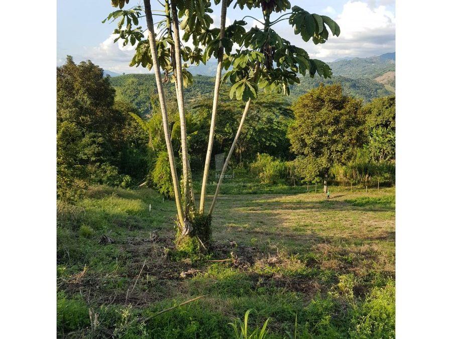 vendo lote caney via cabana manizales