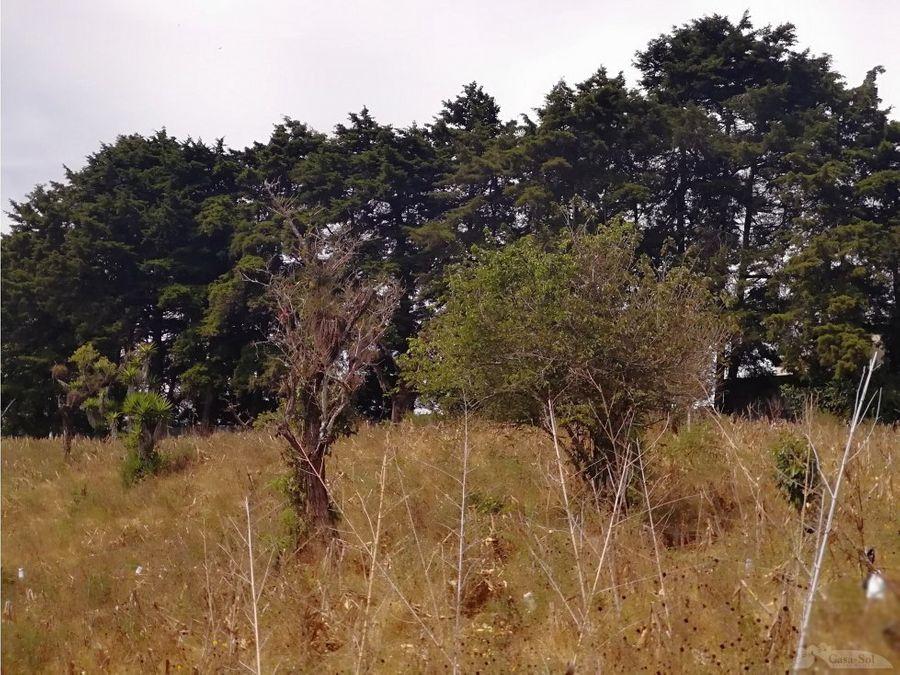 terreno km 265 atras de bosque de vila verde ces