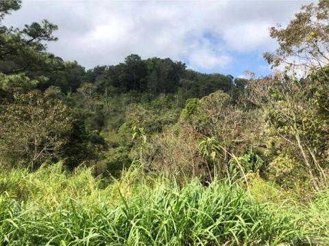 terreno en venta rancho verde d