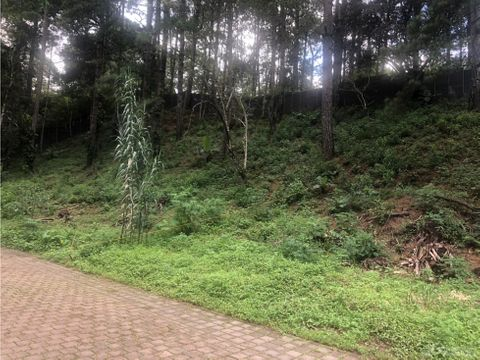 terreno en venta bosques de muxbal