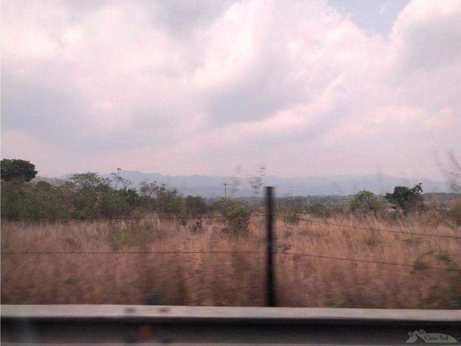 terreno en renta en km 36 ces d