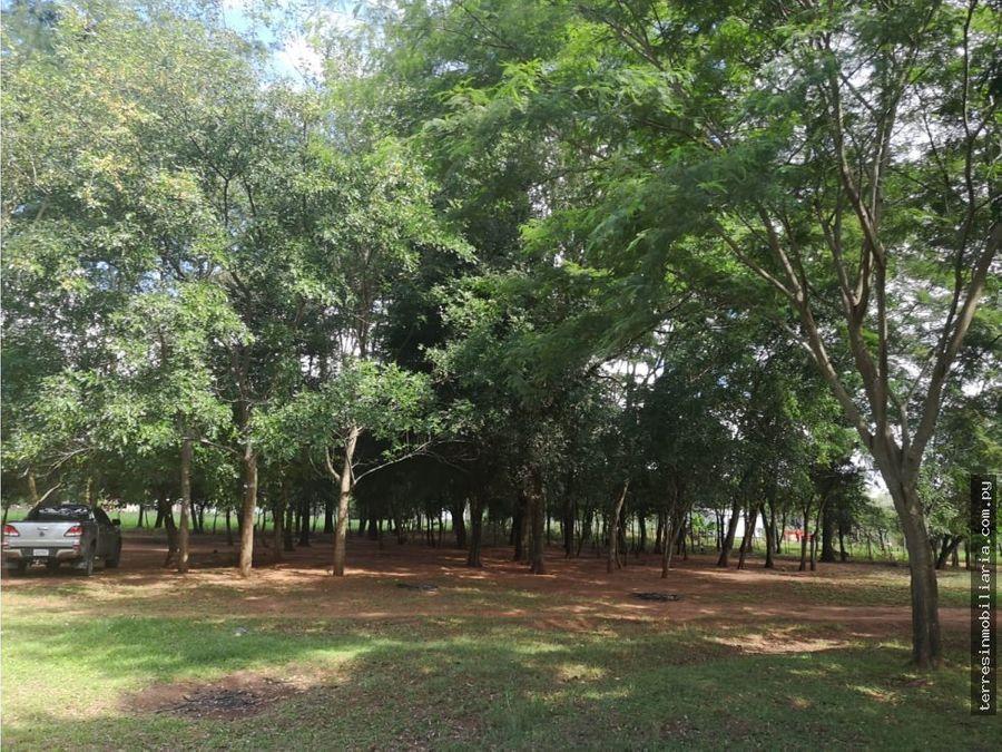 vendo14 hectareas en santani san pedro