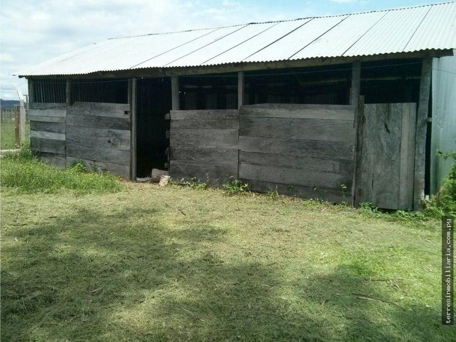 terres vende estancia en paraguari