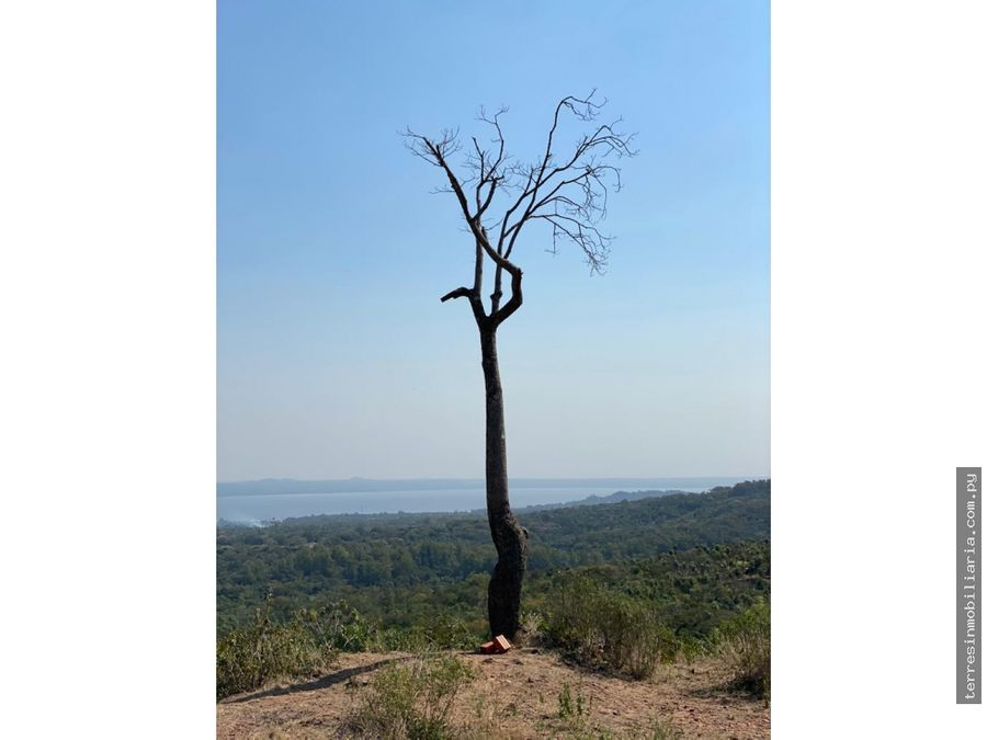 en venta 4 hectareas en san bernardino con vista al lago