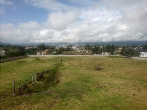terreno privilegiado de 1 hectarea puembo venta