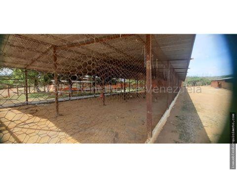 granja avicola en venta pavia barquisimeto 21 22748 jcg